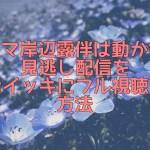 岸辺露伴は動かない動画配信ドラマ1話~全話無料視聴する方法!見逃し配信や再放送情報も!