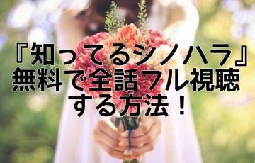 知ってるシノハラ無料動画でフル視聴する方法!スピンオフが1話~全話フルで見れる!