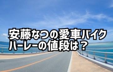 安藤なつの愛車バイク(ハーレー)の値段は?