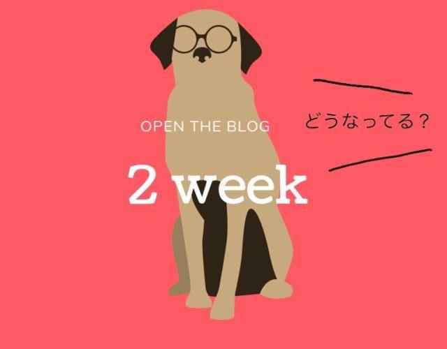 【運営】ブログ開設2週間経過!アクセス数は?アドセンスは??