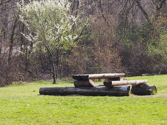 Picnic Bench Table Nature Park  - benchtalks / Pixabay
