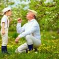 敬老の日はどんな花を贈る?種類や花言葉の選び方!