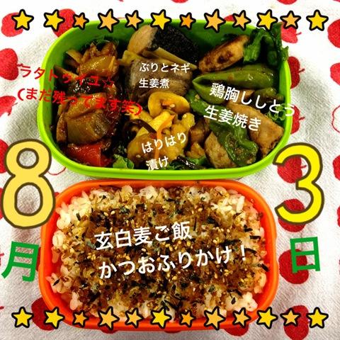 今日のダイエット弁当(2012年8月3日)