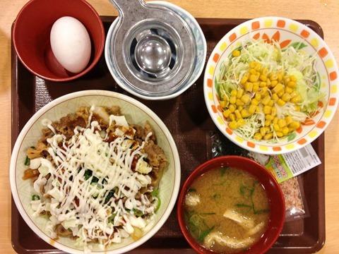 130802sukiya-okonomigyutamadon05