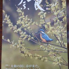 月刊奈良3月号