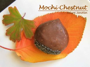 mochi-chestnut-uiro-japanese-sweet-wagashi-london
