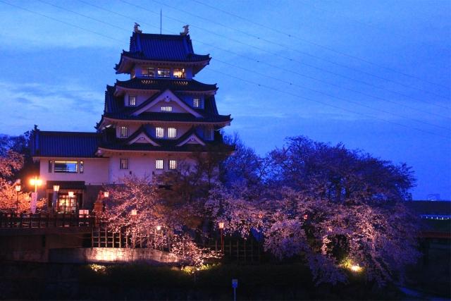 墨俣城 夜桜