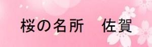 佐賀の桜の名所