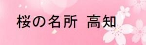 高知の桜の名所