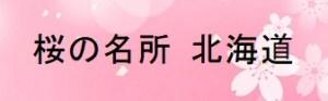 桜の名所北海道