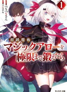 Shokyuu Majutsu Magic Arrow wo Kyokugen made Kitaetara