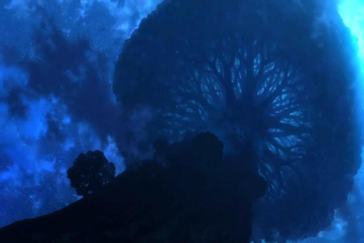 フリューゲルの大樹
