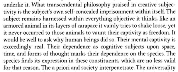 Adorno-Subject-Object-Armadillo-p252
