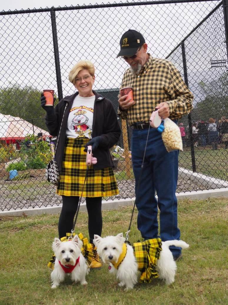 Dogs Dressed in Tartan