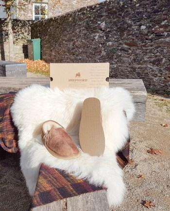 shepherd-slipper-bosse-ant-cog