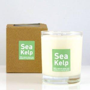 Heaven Scent Organic Candle in Sea Kelp