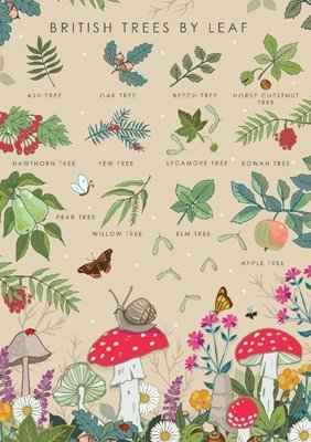 British Trees Collection Card, by Heart of a Garden