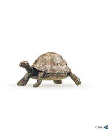 Papo Tortoise
