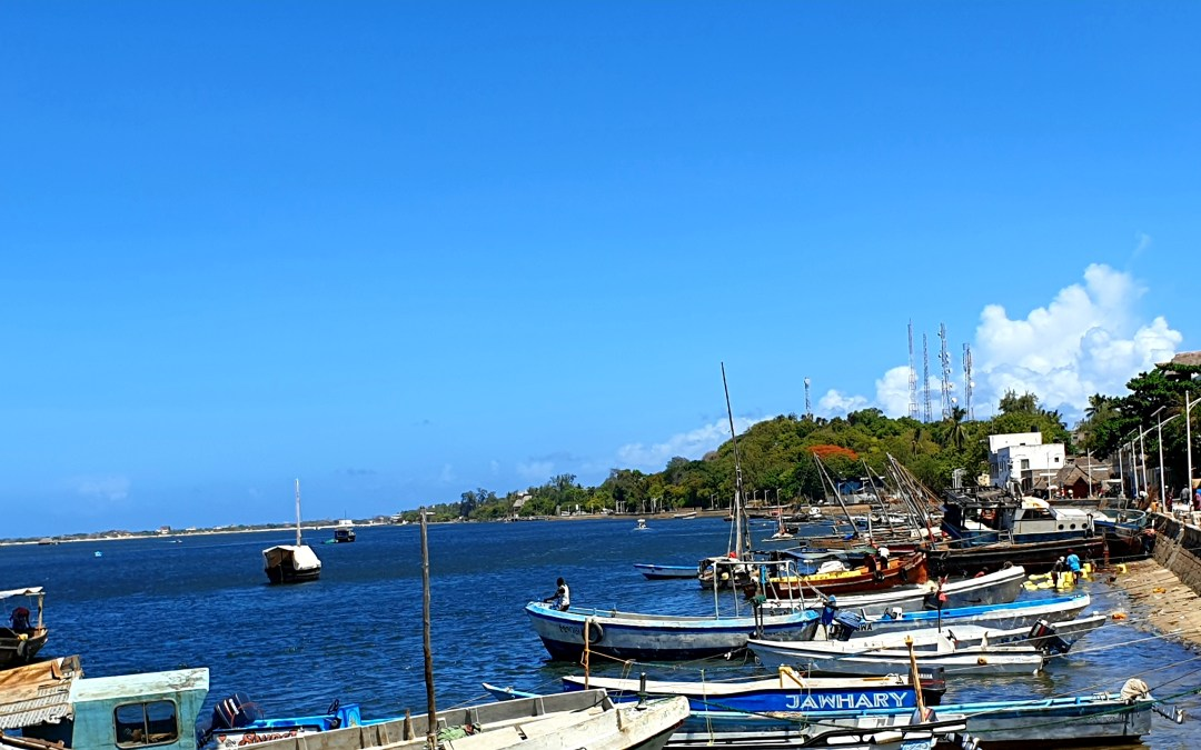 LAMU TAMU – ACTIVITIES TO DO IN LAMU