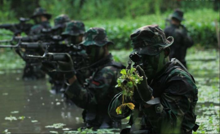 pangkat tentara nasional indonesia