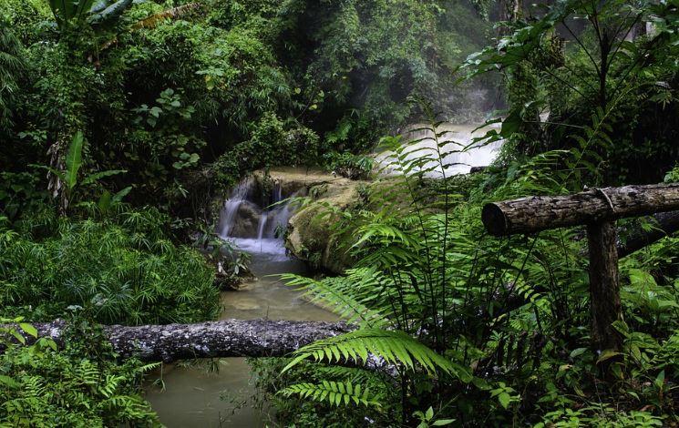 Sumber Daya Alam Pengertian Jenis Jenis Contoh Kekayaan Alam Indonesia Salamadian