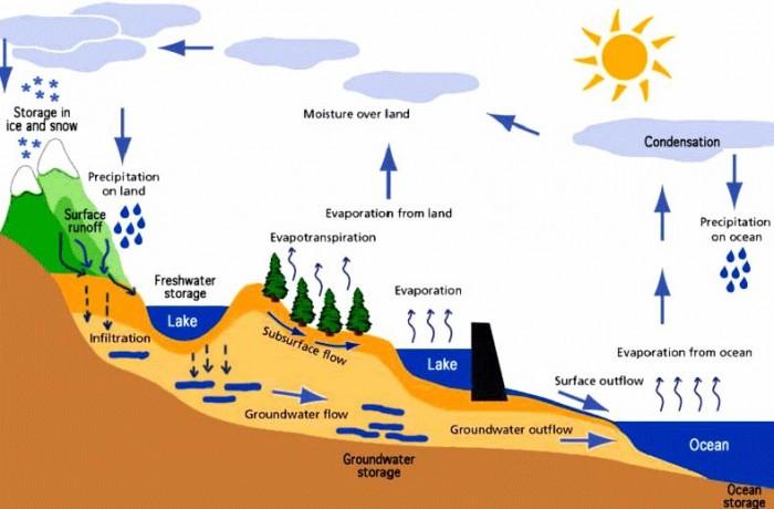 komponen siklus hidrologi