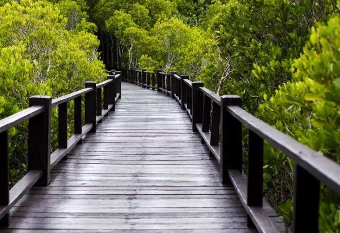 120 Kata Kata Bijak Motivasi Mutiara Indah Penuh Makna Cinta Kehidupan Salamadian