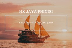 Open Trip Komodo Labuan Bajo NK Jaya Phinisi
