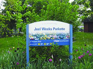 Joel Weeks park