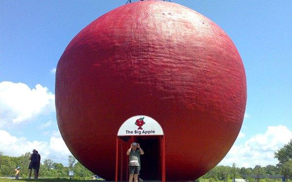 سیب بزرگ  در شهر کولبورن (Colborne) انتاریو