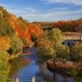 درختان کاج قرمز، رودخانه های 8000 ساله، آهوی دم سفید،  روباه قرمز، آبشار 39 متری، قدیمی ترین فسیل ...