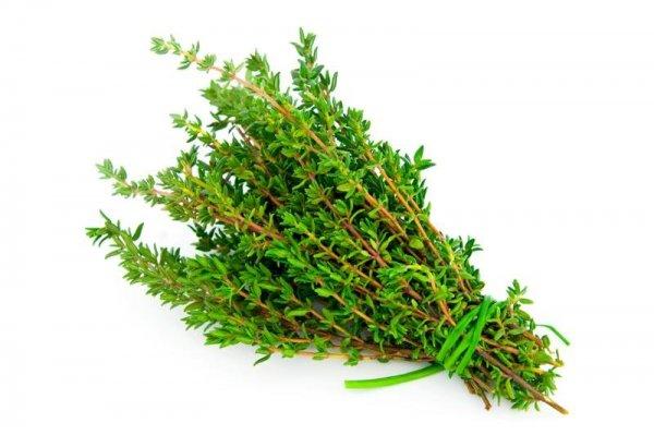 Fűszernövények - kakukkfű