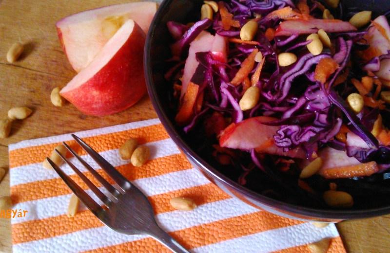 Lilakáposzta saláta naranccsal, mogyoróval