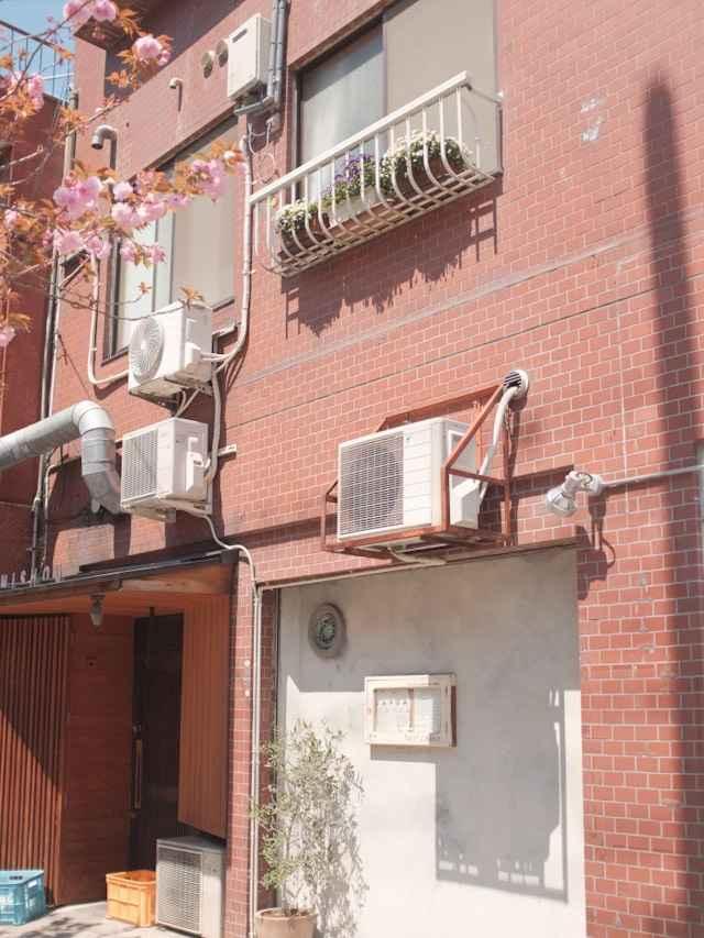 Plantas e ar-condicionado