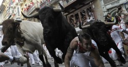 Running Of The Bulls During The Fiesta de San Fermin Day 4