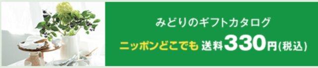 阪神百貨店2020年お中元早期割引 みどりのギフト