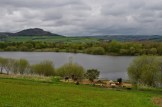 The butterfly beach and Tittesworth Water