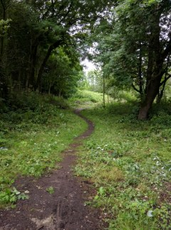 Widening the path at Sale Water Park