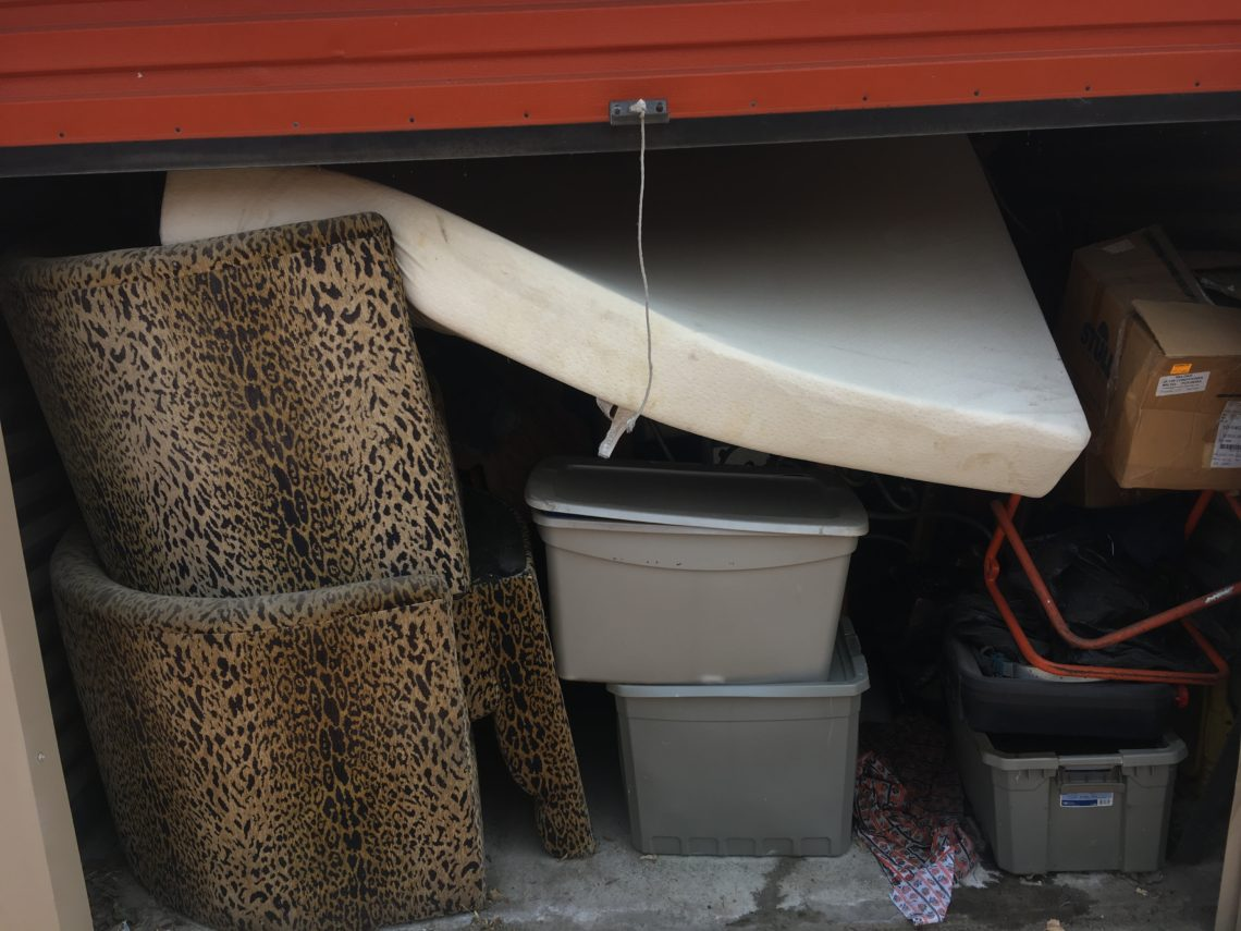 Tiger Self Storage u2013 N. Highlands. Read more. Categories Sacramento Storage Auctions & Auction Schedule u2013 Sale Maker Auctions