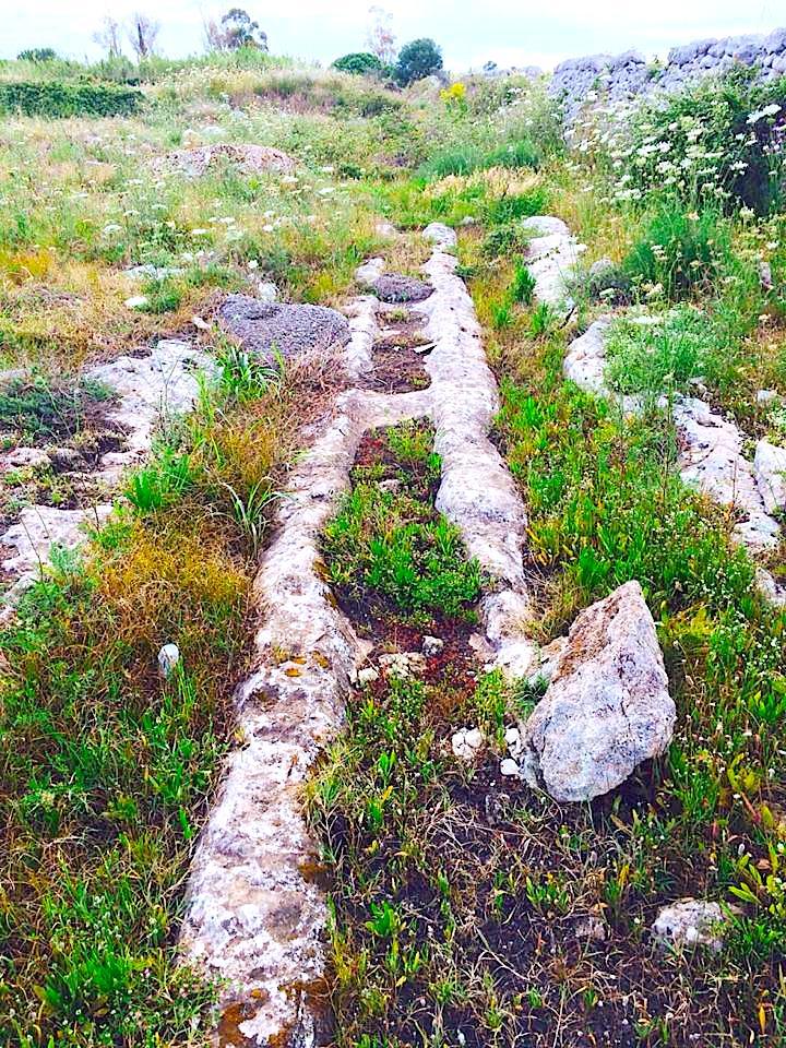 Il Registro Nazionale dei Paesaggi Rurali  Salento SAT