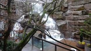 Waterfall Garden Park.