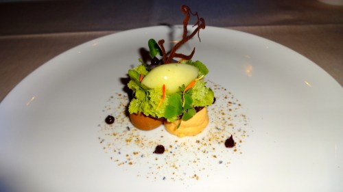 Chocolate Mousse with Chocolate Truffle and Herb Spongecake and Sorbet (7/10).