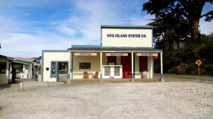 Hog Island!