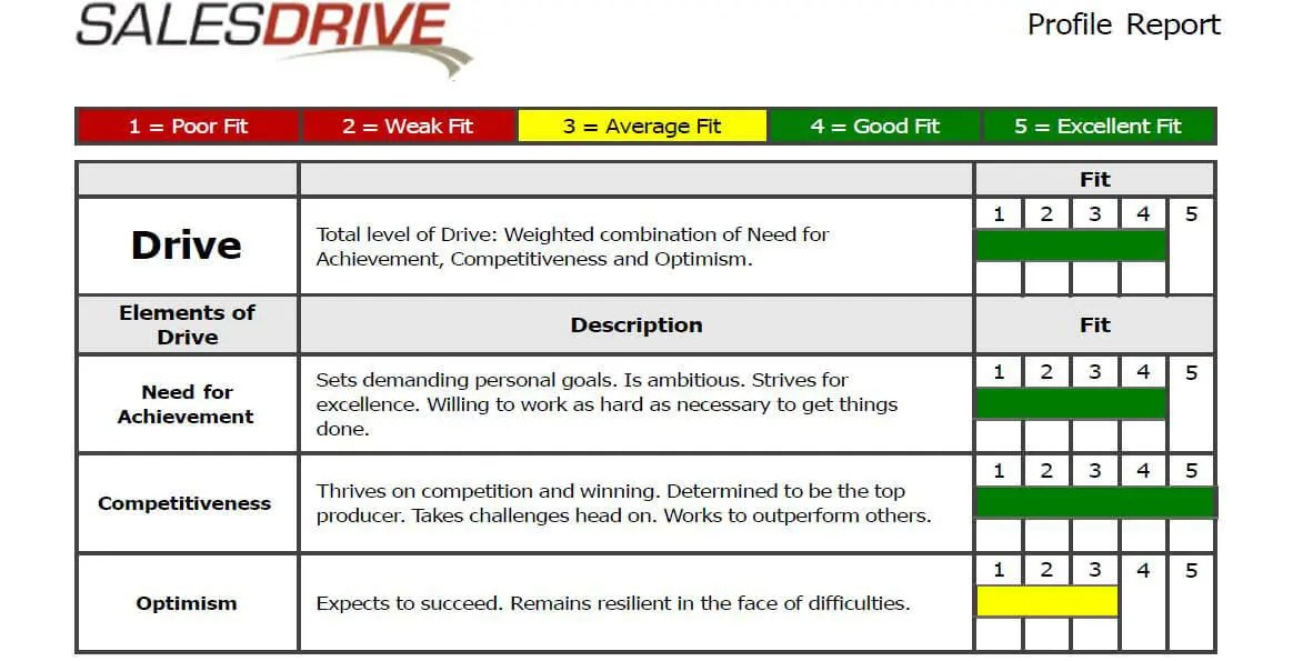 The DriveTest Report® - Online Sales Test Results by SalesDrive, LLC