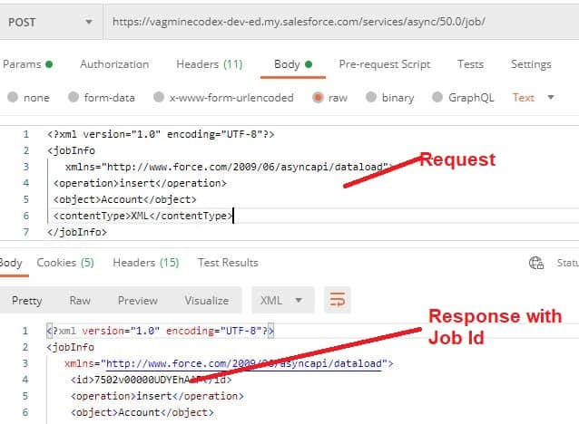 Bulk API Job Creation - SalesforceCodex