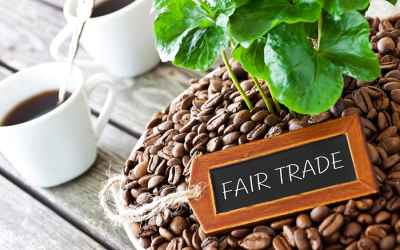 Incorporate Fair Trade To Define A Purpose
