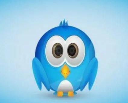 primeros pasos en twitter