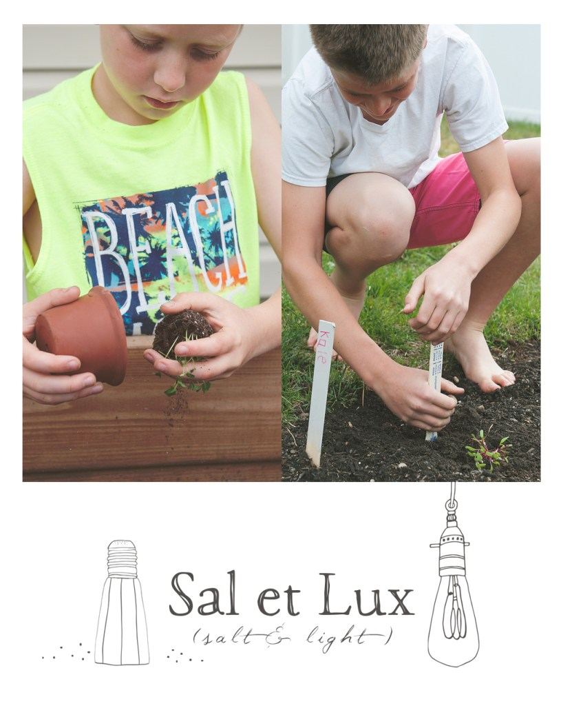 Gardening With Kids (Life Lessons from Dirt and Seeds)