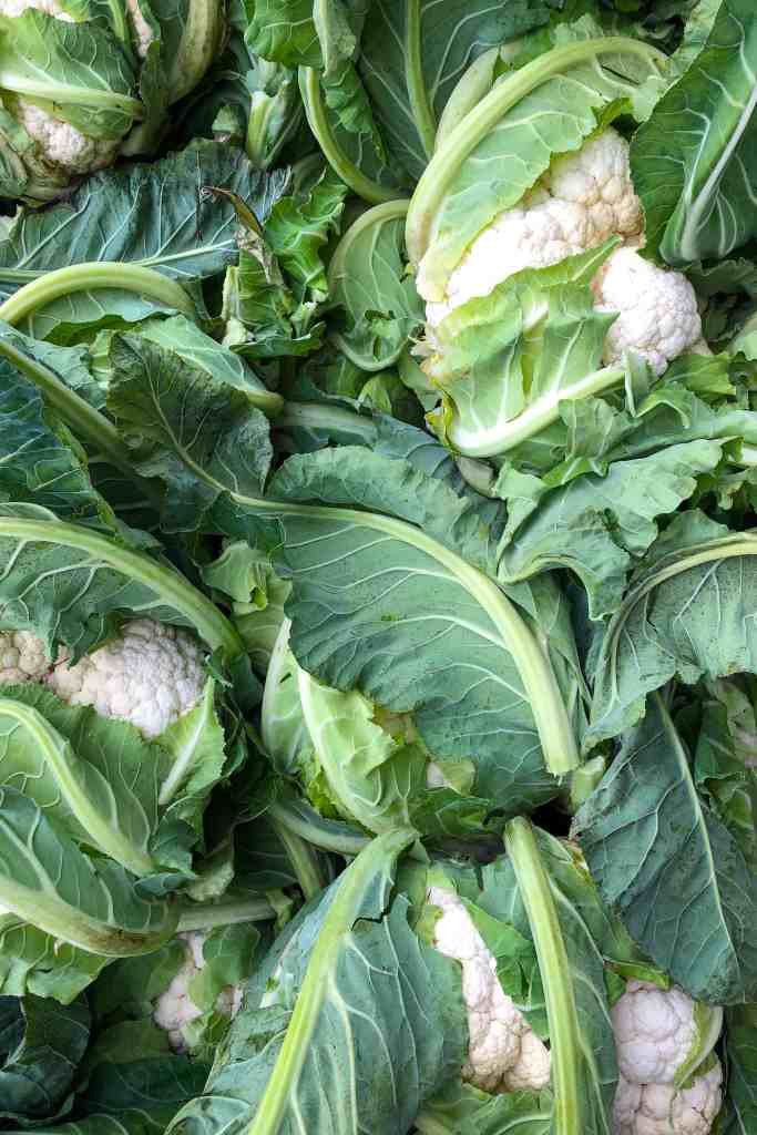 A local crop of cauliflower.