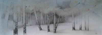 Pinar nevado 41x14